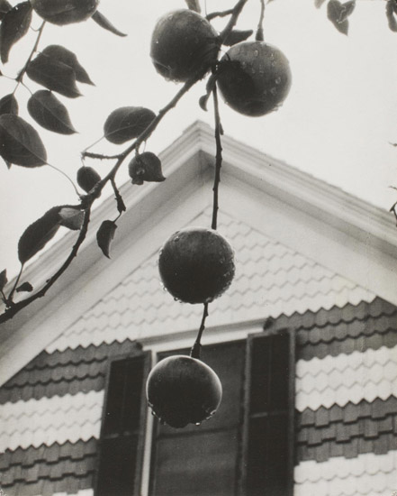 Gable and Apples